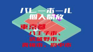 【八王子市、武蔵野市、青梅市、府中市】バレーボール個人開放【2020年度版】
