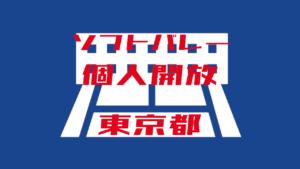 【ソフトバレー】東京都個人開放【2019年度版】