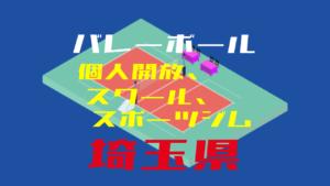 【埼玉県】バレーボール個人開放、スクール、ジム【2019年度版】